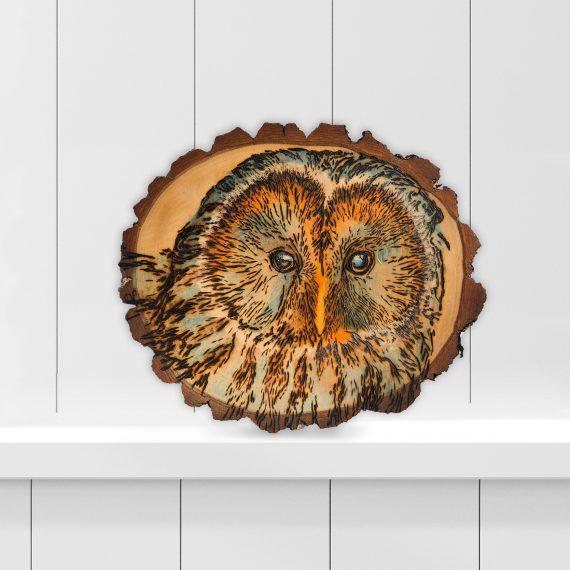 owl-silhouette